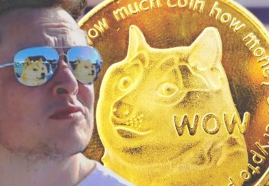 Elon Musk Reaffirms Support for Dogecoin, Changes Profile Picture — DOGE Trading Volumes Jumped 1,250% in Q2